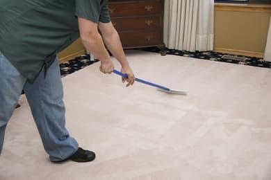 carpet cleaning in Allen